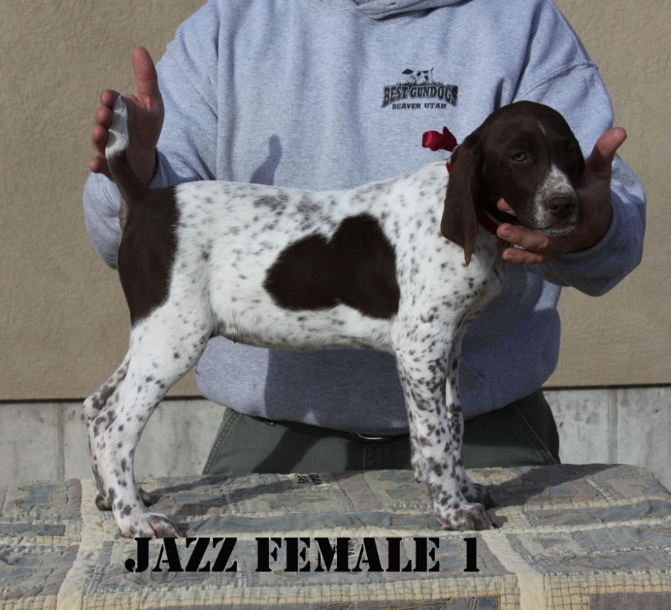 Jazz-Female-1