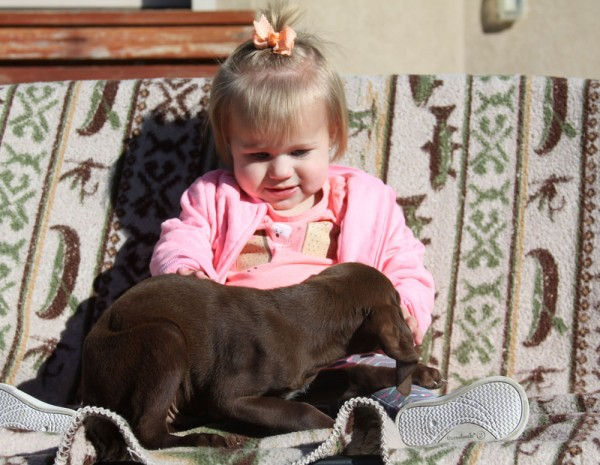 Kinsley-and-Puppy