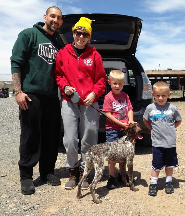 Skylar Grey Buys German Shorthair Pointer